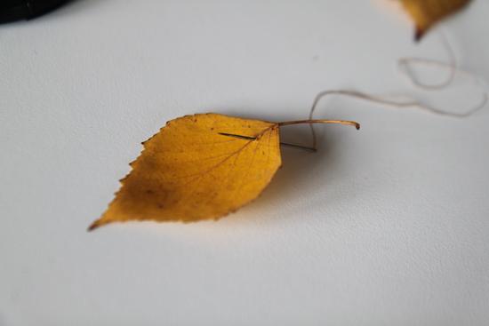 guirlandes-de-feuilles2